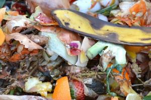Composting of Solid Waste