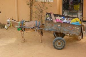 Solid Waste Collection Animal Cart