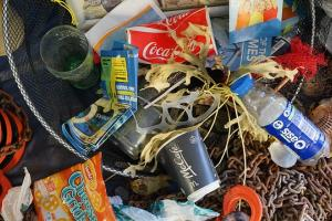 Solid Waste Health and Safety Issues